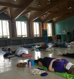A photo taken mid-class inside the Forward Motion Yoga studio.
